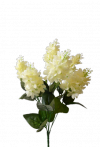 Bukiet bzu  x 7 kwiatów  MIX
