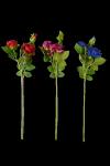 Róża z pąkiem 3 kwiaty MIX