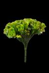 Bukiet róża z dodatkami 24 kwiatów MIX