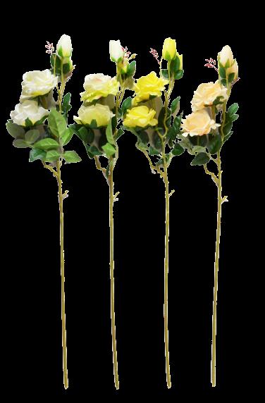 Róża na gałązce z pąkami MIX
