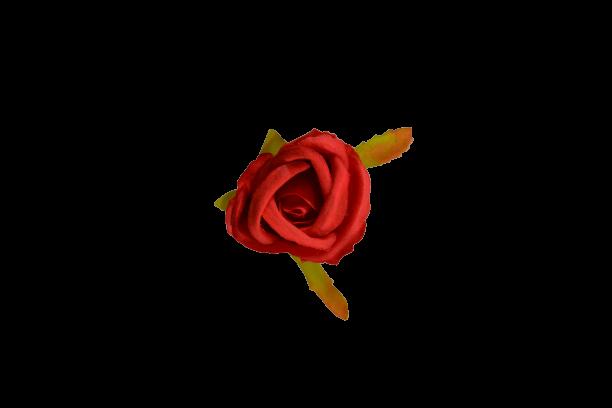 Róża drobna wyrobowa MIX - 20TJ064