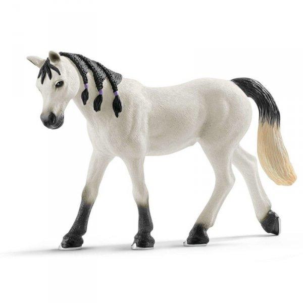 Horse Club Koń Arabski Klacz