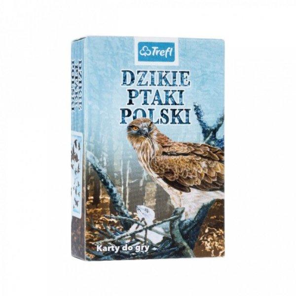 Karty Dzikie ptaki Polski