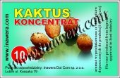 KONCENTRAT KAKTUS 10 ML