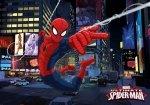 Fototapeta na flizelinie Spider-Man XXL