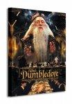 Harry Potter Dumbledore - Obraz na płótnie