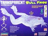 Model plastikowy Lindberg - Transparent Bull Frog (Przezroczysta żaba rycząca)