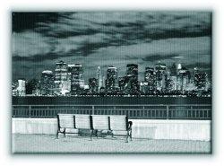 Nowy Jork, Liberty State Park - Obraz na płótnie