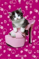 Kotek w Bucie Keith Kimberlin - plakat