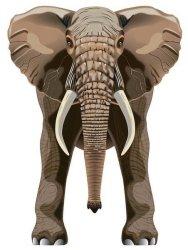 Latawiec BRAINSTORM - WNS SkyZoo 40x30'' Nylon Elephant