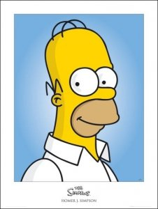 The Simpsons homer - plakat premium