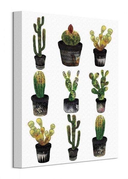 Kaktusy - obraz na płótnie