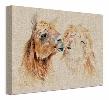 Zakochane Lamy - obraz na płótnie