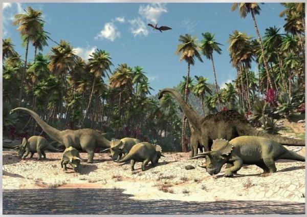 Fototapeta na flizelinie Dinozaury XL