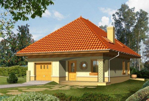 Projekt domu EDEN