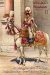 Źródła do historii Pułku Polskiego Lekkokonnego Gwardii Napoleona I tom II