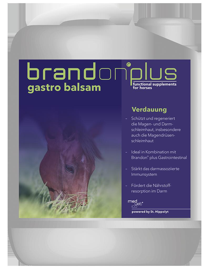 Gastro Balsam - balsam na wrzody 2,5 l Brandon PLUS