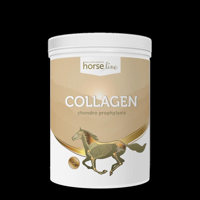 HorseLinePRO Collagen800g proszek