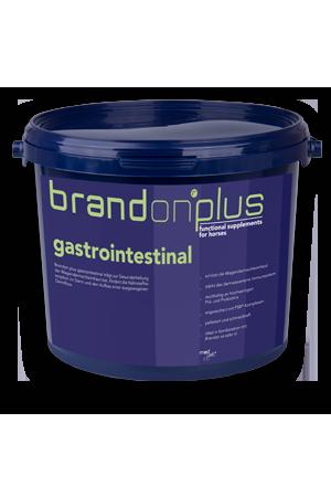 Gastrointestinal - leczenie wrzodów 3 kg Brandon PLUS