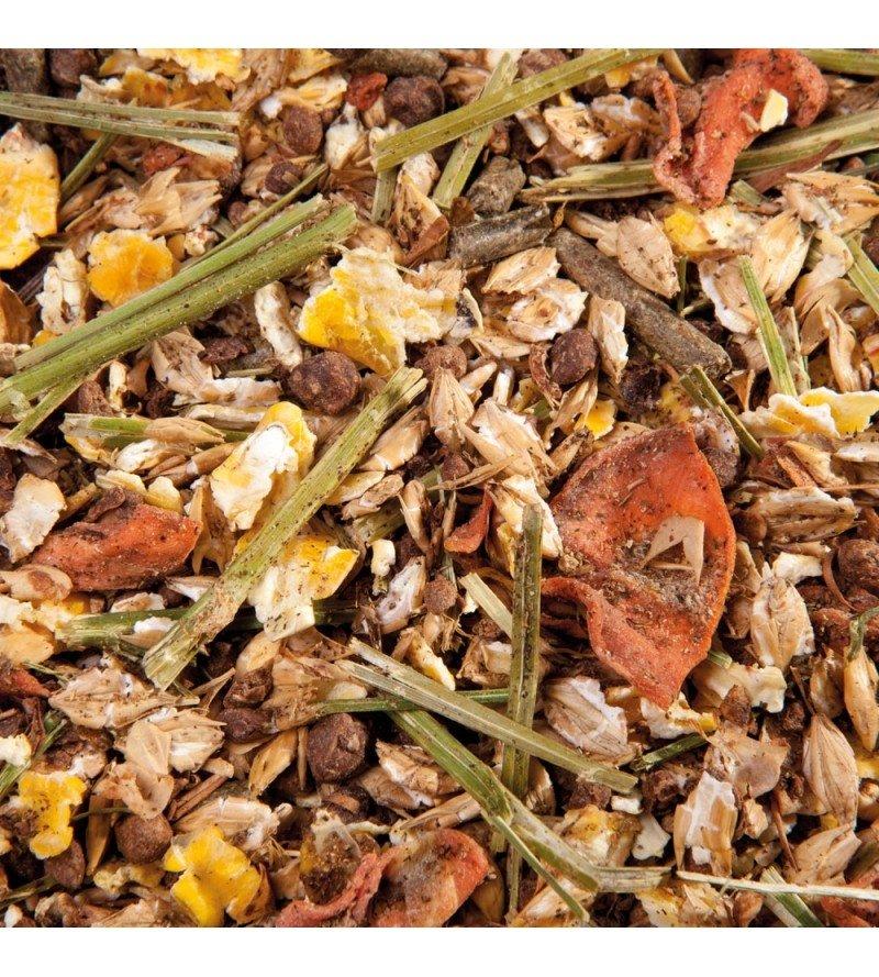 Frucht Musli- bezowsowe musli z dodatkiem owoców dla koni wybrednych 20 kg  Eggersmann
