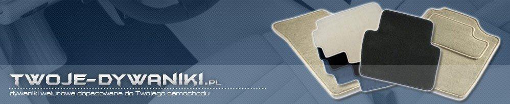 Dywaniki samochodowe na wymiar. Producent dywaników - DGS