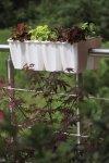 Blumenkasten Balkonkasten crown 600 weiß