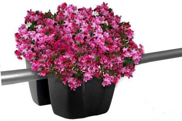 Blumenkasten Balkonkasten crown 240 terrakotta