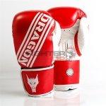 Rękawice bokserskie CHAMPION Dragon