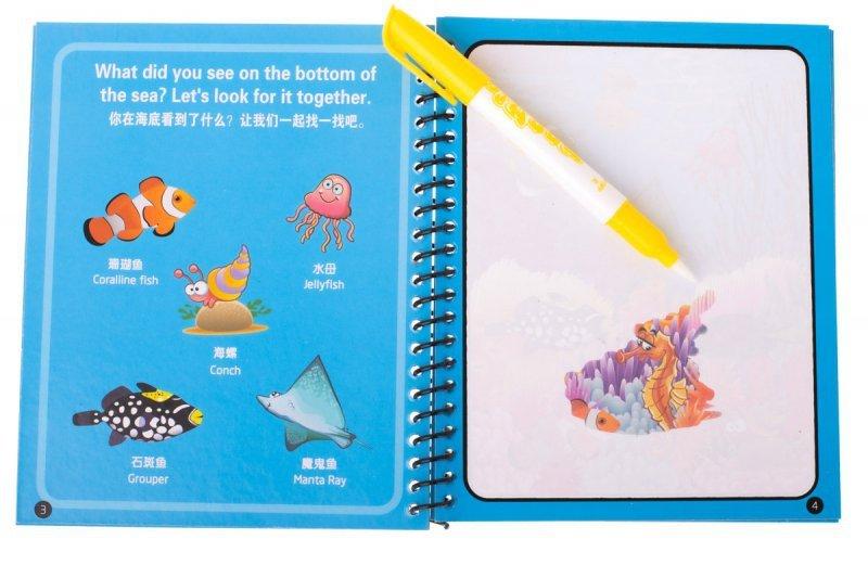 Książeczka wodna z mazakiem zwierzęta morskie niebieska