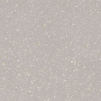 Paradyż Moondust Silver 59,8x59,8
