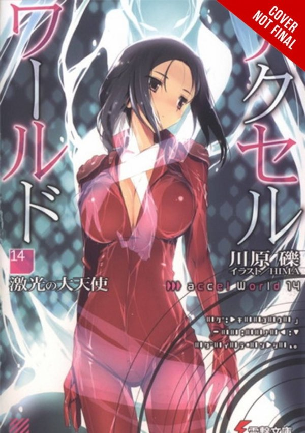 ACCEL WORLD LIGHT NOVEL SC VOL 14 *