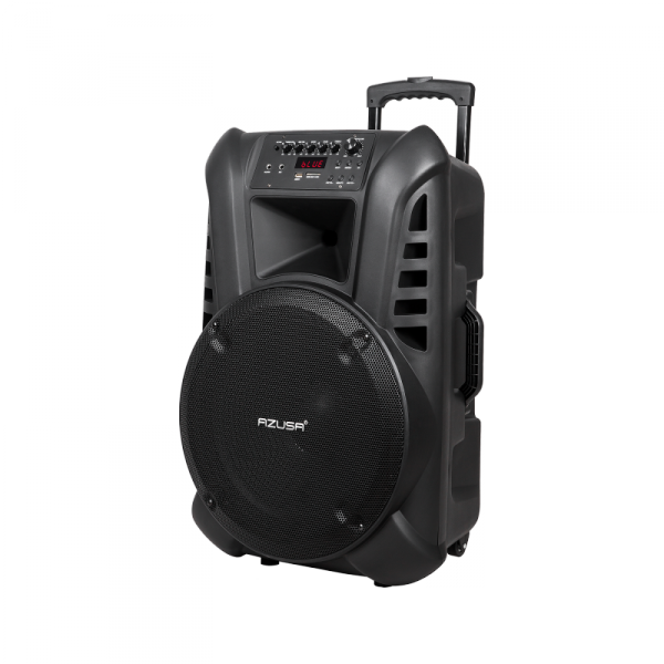 """Kolumna aktywna ( z 2 mikrofonami bezprzewodowymi, SD, Bluetooth, USB) 15"""" 120W"""