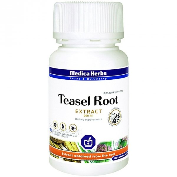 Medica Herb Teasel Root/Szczeć Pospolita