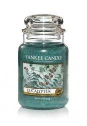 Świeca Yankee Candle Eucalyptus - duży słoik