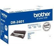 Bęben oryginalny Brother do HL-L2312D / HL-L2352DW / HL-L2372DN / DCP-L2512D / DCP-L2532DW /DCP-L2552DN / MFC-L2712DN / MFC-L2712DW / MFC-L2732DW | 12 000 str.