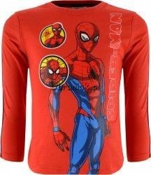 Bluzka Spiderman z lampasem czerwona