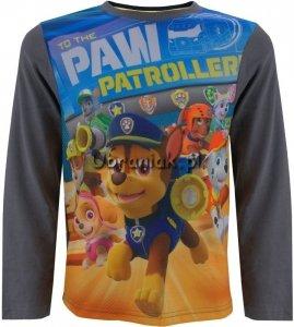 Bluzka Psi Patrol Psiaki grafit