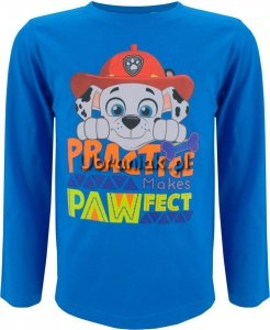 Bluzka Psi Patrol Marshall niebieska