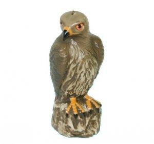 Jastrząb Odstrasza Ptaki Super Ozdoba