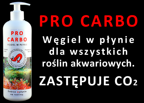 Pro Carbo 500Ml Węgiel W Płynie Alternatywa Dla Co2
