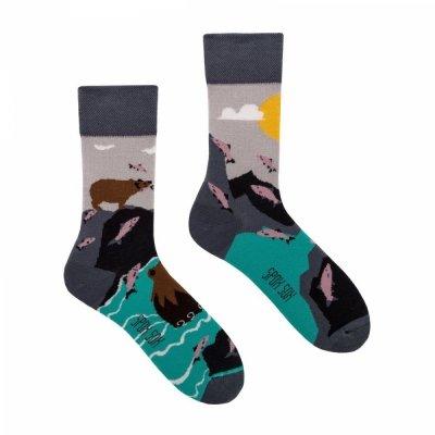Spox Sox Bears & salmons Ponožky