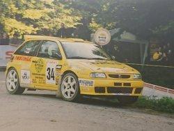 RAJD WRC 2005 ZDJĘCIE NUMER #316 SEAT IBIZA