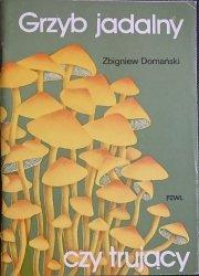 GRZYB JADALNY - Zbigniew Domański 1982