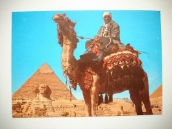 GIZA. CAMEL DRIVER NEAR THE SPHINX AND KHAFRE. PYRAMID