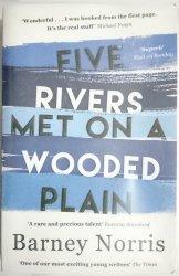 FIVE RIVERS MET ON A WOODED PLAIN - B. Norris 2016