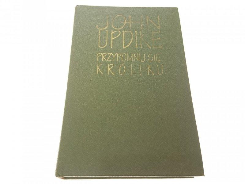 PRZYPOMNIJ SIĘ KRÓLIKU - John Updike (1993)