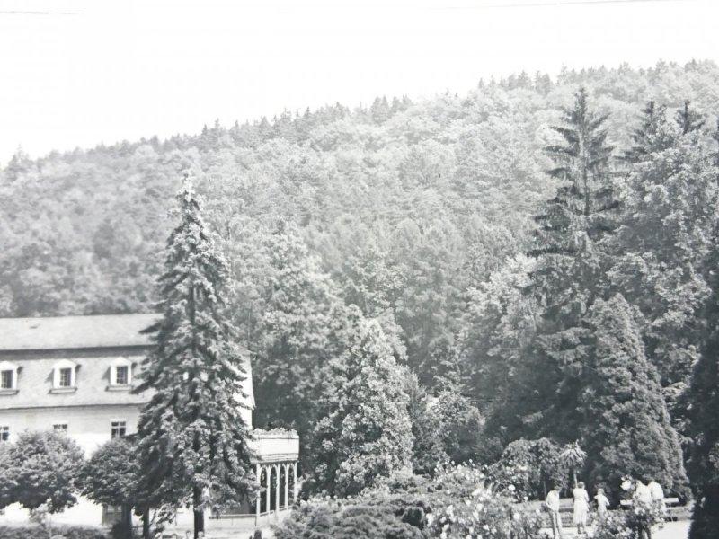 KUDOWA-ZDRÓJ - FRAGMENT PARKU