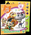 44 koty Poznajmy się! (1)