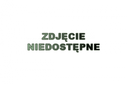 Pokrywka GN - linia chłodnicza CHP - 1/3 REDFOX 00010951 CHP - 1/3