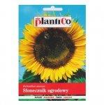 SŁONECZNIK ogrodowy JADALNY nasiona Plantico 10g
